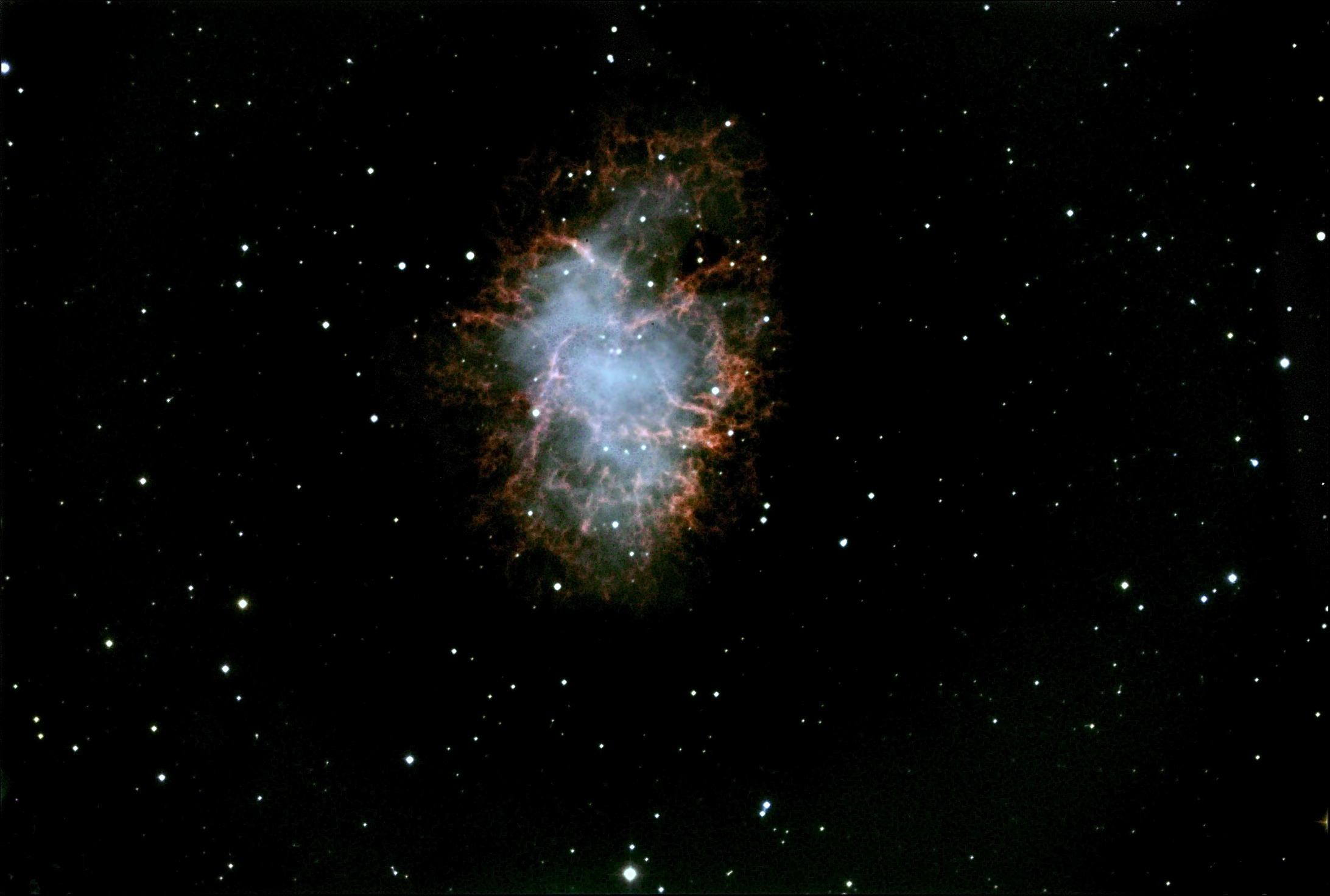 taurus the bull constellation crab nebula - photo #17
